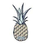 Southernology® Pineapple Promo Decal